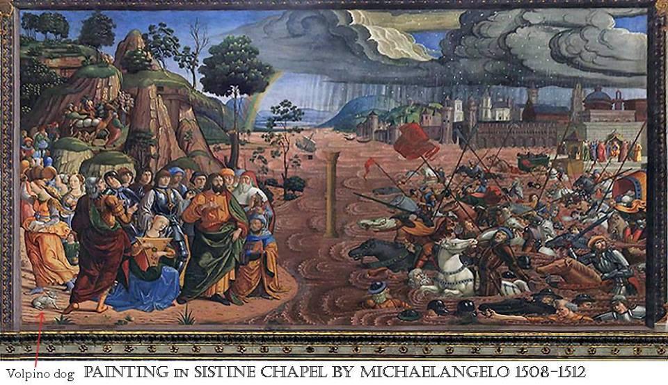 Michelangelo Buonarroti, particolare della Cappella Sistina