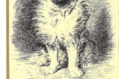 """12 Loulou. Da """"Les chiens et les chats"""". Paris 1888"""